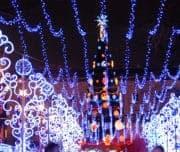 Новогодние огни Петербурга