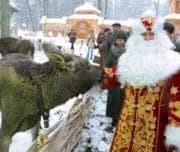 Поместье деда Мороза, Белоруссия