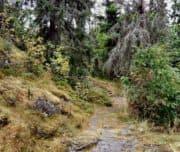 Гора Кухавуори, Сортавала
